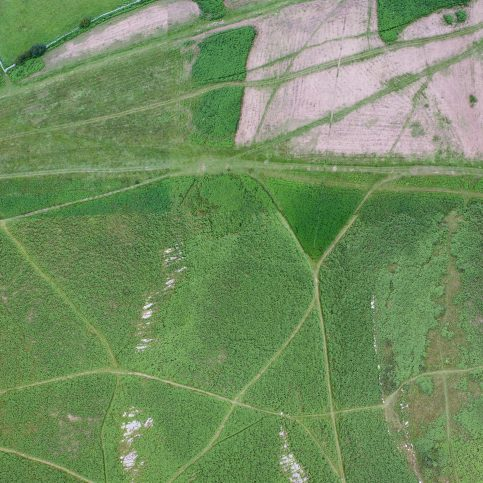 An aerial view (wide) of the enclosure on Birkrigg Common, near Urswick, Ulverston, before bracken clearing.