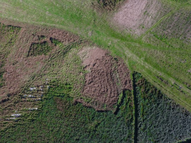 An aerial view of the enclosure on Birkrigg Common, near Urswick, Ulverston, after bracken clearance.