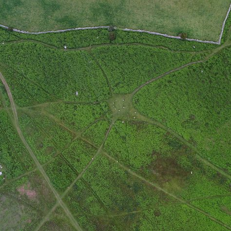 An aerial view of the stone circle on Birkrigg Common, near Urswick, Ulverston, before bracken clearing.