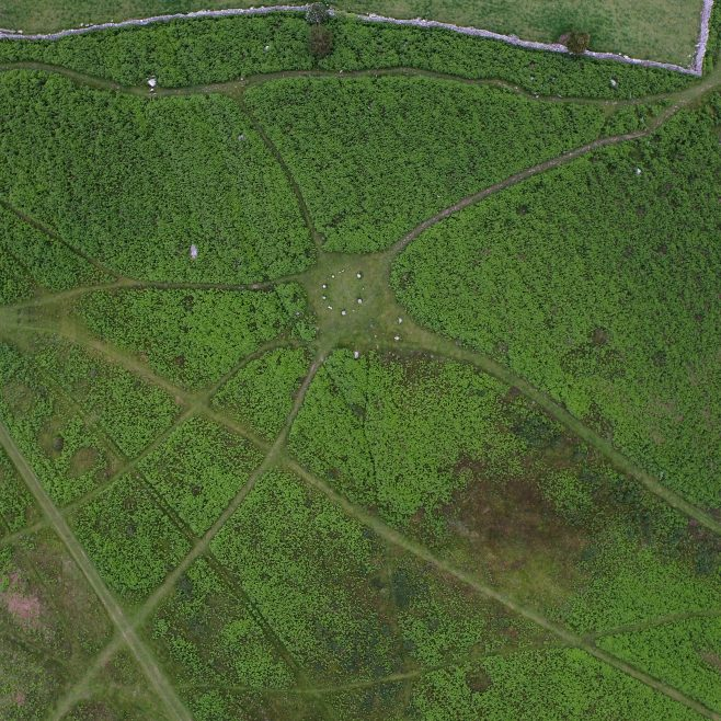 An aerial view (wide) of the stone circle on Birkrigg Common, near Urswick, Ulverston, before bracken clearing.
