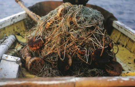 Haaf net piled up in the bottom of a fishing boat