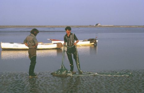 Fishermen Tom and Philip Smith on shore with a whammel net