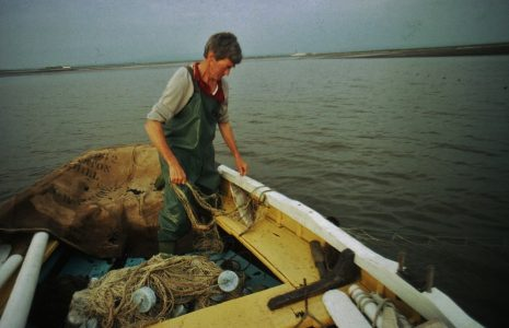 Fisherman Tom Smith pulling a whammel net into his boat