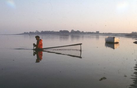 Fisherman Tom Smith placing a haaf net across the current