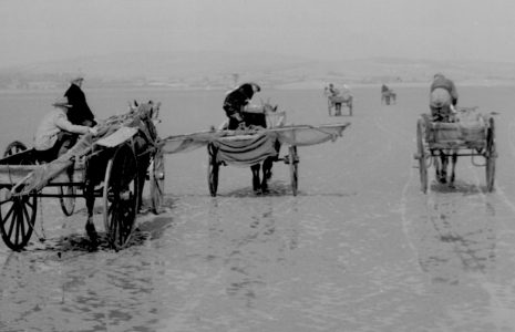 Shrimpers returning to Sandgate shore, Flookburgh, c1952