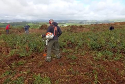 A film showing volunteers clearing bracken on Birkrigg Common, near Urswick, Ulverston, in September 2016 (long version).