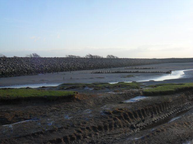 View of shore at Flookburgh Bay showing remains of fishing baulks