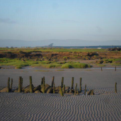 View of fishing baulks at Flookburgh Bay looking inland.