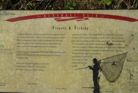 Photo of information board 'Flowers and Fishing' at Humphrey Head