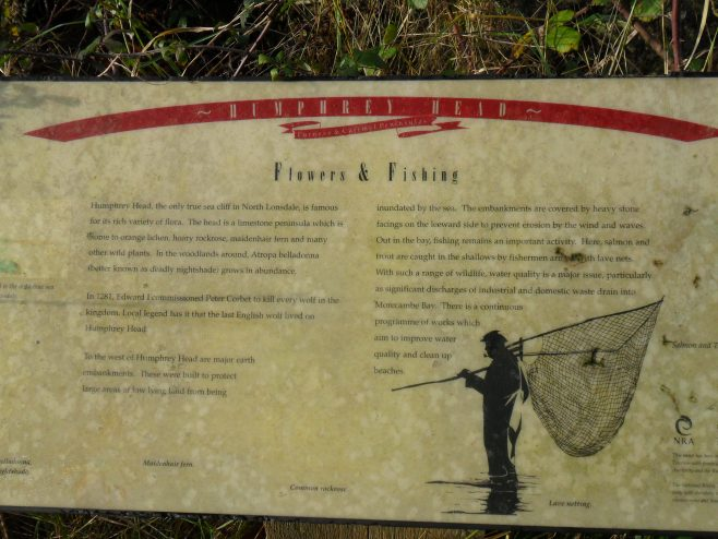 "Photo of information board ""Flowers and Fishing"" at Humphrey Head"
