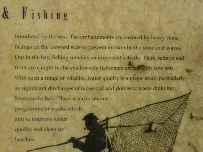 "Close-up photo of information board  ""Flowers and Fishing"" at Humphrey Head"