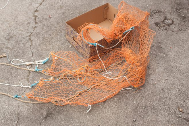 Model of a trawl net 2. | Malcolm Sole