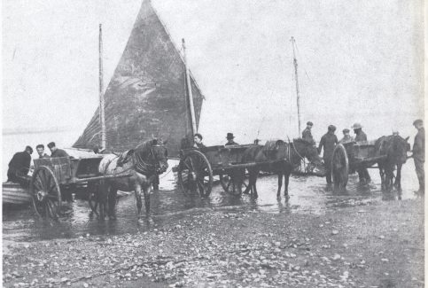 Musselers landing their catch at Kilnbrow cart road.