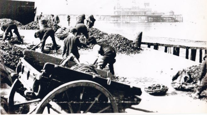 Riddling mussels at Kilnbrow cart road | Keith Willacy collection
