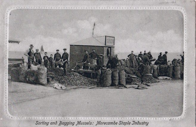 Morecambe fishermen sorting and bagging mussels | Keith Willacy collection