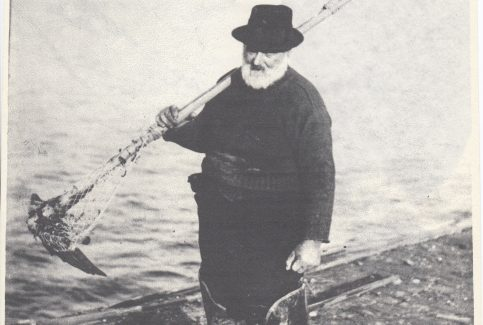 "William ""Buffo"" Woodhouse gathering mussels with a long craam on Kilnrow"