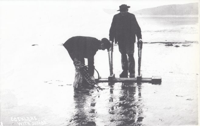 Flookburgh fishermen, Ike and Billy Burrow cockling | Keith Willacy collection