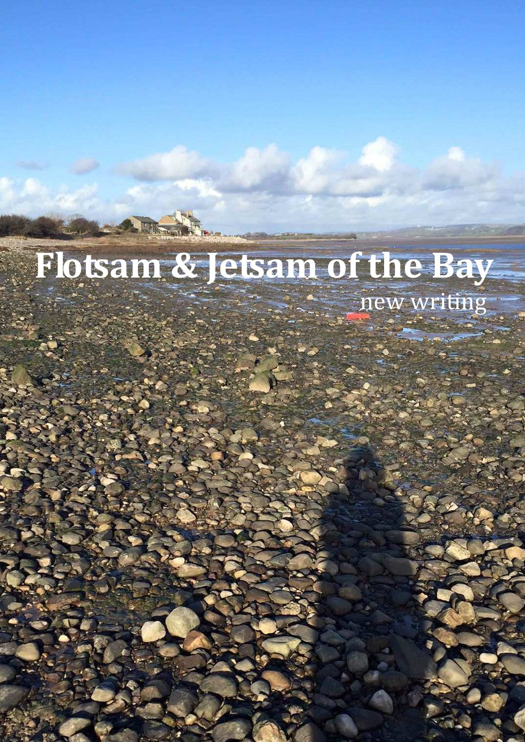 Flotsam and Jetsam of the Bay - new writing
