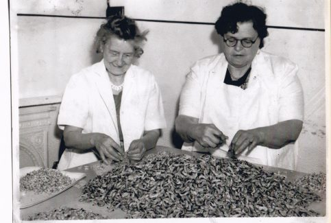 Picking shrimps at Morecambe Fishermen's Co-operative Society. Pictured are Ada Bartholemew, aunt of Eric Morecambe, and Ginny Gardener