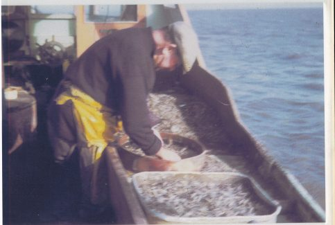 "Amos Willacy riddling shrimps aboard ""Linda"" LR 24"