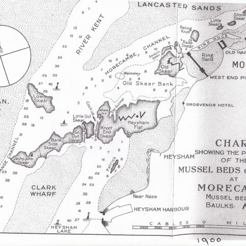 A chart showing the positions of the mussel beds or skears at Morecambe