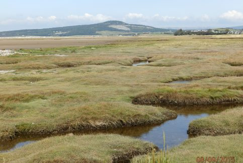 Approaching Warton Crag - A Walk around the Bay - Image 08 - from Bolton-le-Sands