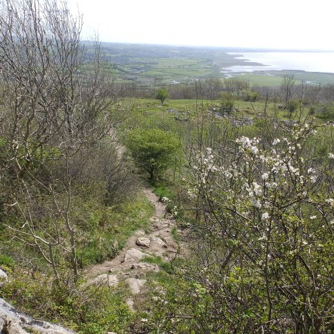Approaching Warton Crag - A Walk around the Bay - Image 09 - from the Crag Summit