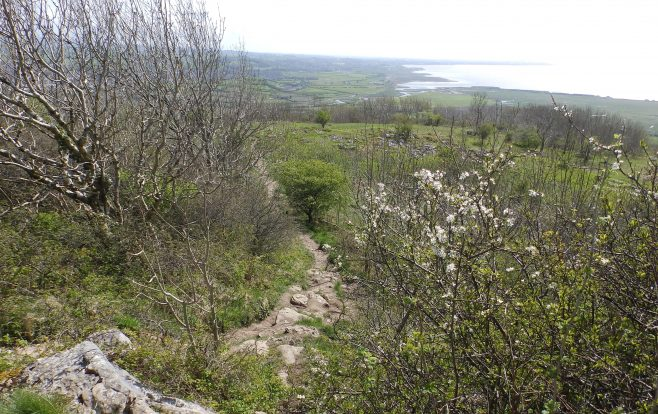 Approaching Warton Crag - A Walk around the Bay - Image 09 - from the Crag Summit | Steve King